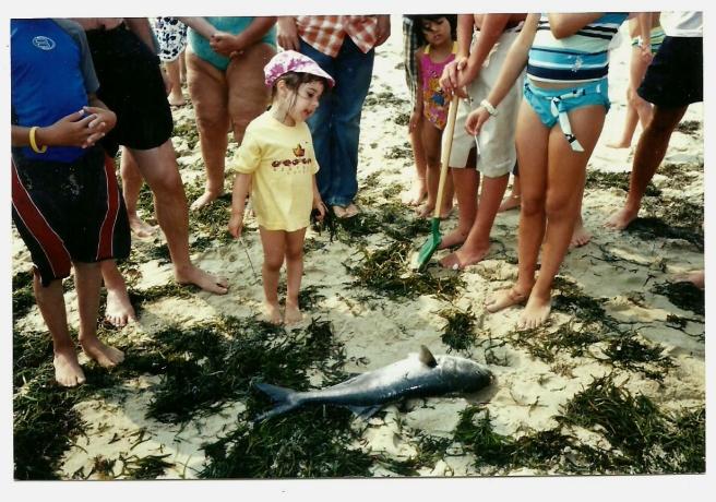 shark funeral2